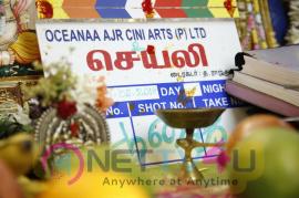 Sayali Movie Pooja Pics