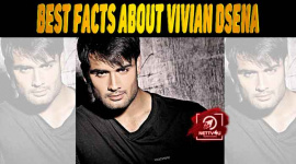 20 Facts About Vivian Dsena