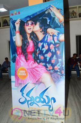 Kannayya Movie Audio Launch Attractive Photos