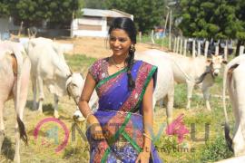Telugu Movie Neelampati Ammoru Movie Dazzling Stills Telugu Gallery