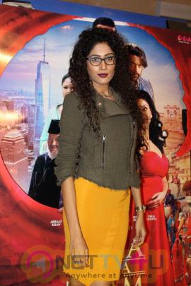 Star Studded Premier Of Film Jeena Isi Ka Naam Hai Photos  Hindi Gallery