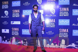 SIIMA Host Destination Meet Stills Telugu Gallery