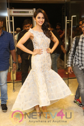 Actress Rakul Preet Singh Smart Looking Pics Tamil Gallery