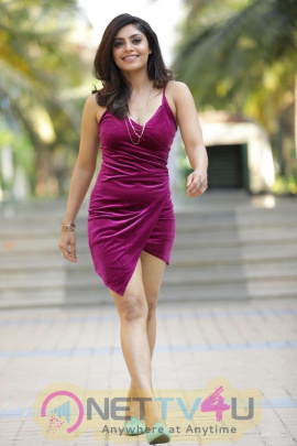 Actress Bhavana Rao Good Looking Photos