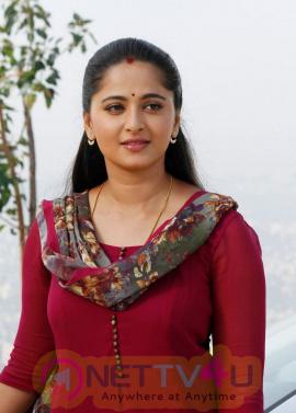 Anushka Shetty Singam 3 Movie Delightful Stills Tamil Gallery