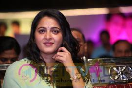 Telugu Movie Show Time Audio Launch Excellent Pics Telugu Gallery