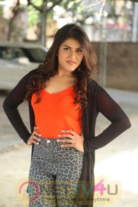 Actress Naira Shah At E EE Movie Trailer Launch Pics Telugu Gallery