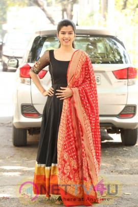 Actress Mahima At Indrasena Movie Success Meet Pics Telugu Gallery