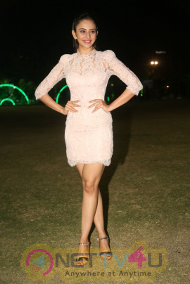 Actress Rakul Preet Singh Lovely Photos