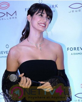 Disha Patani Latest Hot And Sexy Pics Hindi Gallery