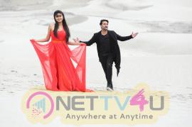 Idi Naa Love Story Movie Stills  Telugu Gallery