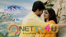 Chandamama Movie New Looking Poster Telugu Gallery