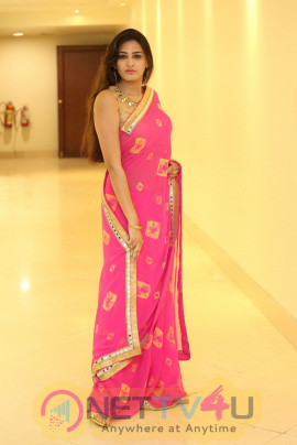 Actress Swetha Jhadav Attractive Stills  Telugu Gallery