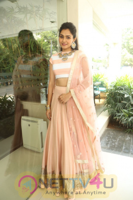 Actress Andrea Jeremiah Detective Movie Press Meet Photos Telugu Gallery