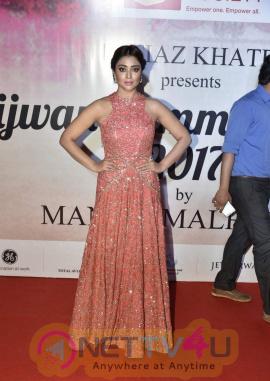 Actress Shriya Saran New Charming Photo Shoot