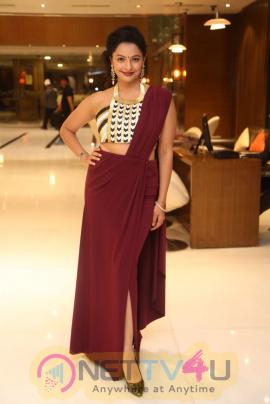 Actress Pooja Kumar At Christmas Cake Mixing Ceremony Event