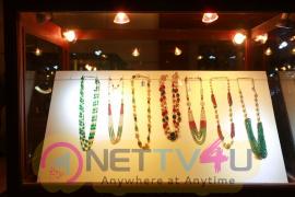 Vermilion And Srinata Jewellers Exhibition Launch At Taj Krishna Lovely Stills Telugu Gallery