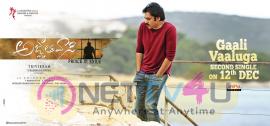Agnathavasi Gaali Vaalu Song Releasie Date Poster Telugu Gallery