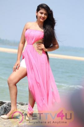 Hawala Movie Romantic Photos Tamil Gallery