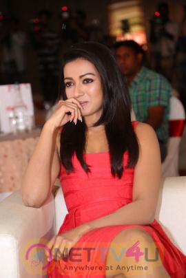 Actress Catherine Tresa Unveils Intex Air Conditioners Gorgeous pics Telugu Gallery