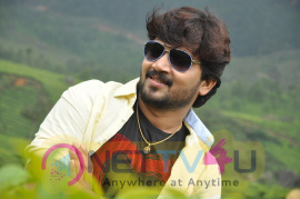 Vetrimaaran Movie Photos Tamil Gallery