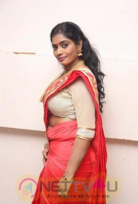 Jayavani Character Artist Latest Hot In Sari Photos Telugu Gallery