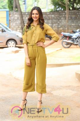 Actress Rakul Preet Singh Lovely Stills Tamil Gallery
