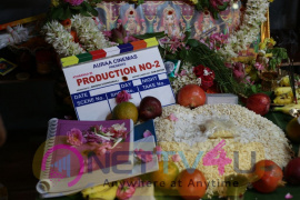Auraa Cinemas Production No 2 Pooja Images
