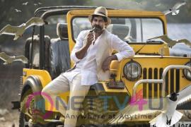 Actor Jagapati Babu Good Looking Stills Tamil Gallery