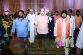 Ambica Krishna Grandson Wedding Reception Images Telugu Gallery