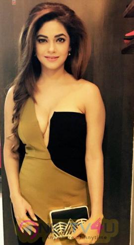 Actress Meera Chopra Beautiful Stills Tamil Gallery