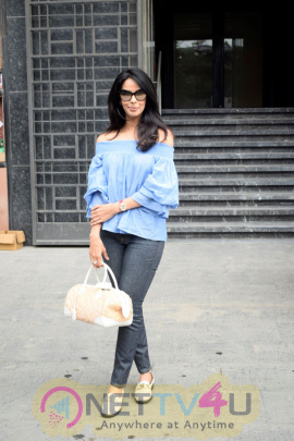 Mallika Sherawat Went To Indigo Delicatessen Restaurant Images Hindi Gallery