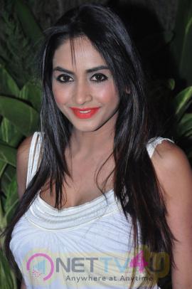 Actress Pooja Sree Latest Glamorous Pics Telugu Gallery