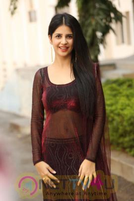 Actress Kashish Vohra Cute Images At Saptagiri LLB Success Meet