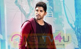 allu arjun latest hd pics in sarainodu movie nettv4u