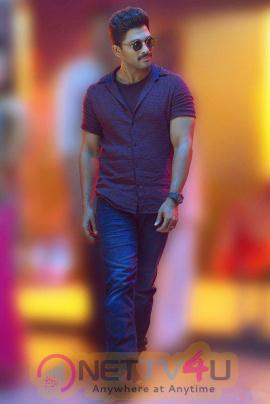 allu arjun latest hd pics in sarainodu movie nettv4u com