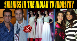 Top 10 Popular Siblings In The Indian TV Industry