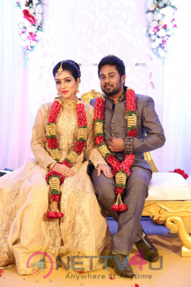 Pichaikaran Movie Heroine Satna Titus And Distributor Karthik Marriage Reception Magnificent Photos