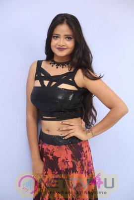 Shreya Vyas  Most Hottest And Sexy Photoshoot Telugu Gallery