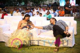 Naa Peru Surya, Naa Illu India Movie Team Thanks Meet Pics  Telugu Gallery