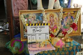 Gypsy Movie Pooja Stills
