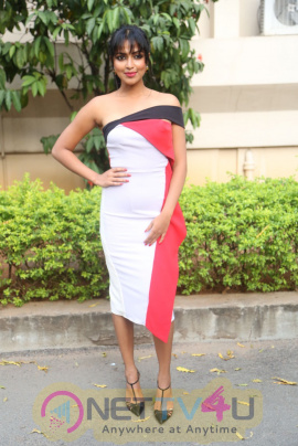 Actress Amala Paul At Dongodochadu Movie Press Meet Pics Telugu Gallery