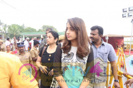 Actress Trisha At Amma Memorial Paying Her Her Homage To Our Beloved Amma Tamil Gallery