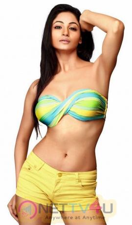 Actress Shillpi Sharma Gorgeous Photos