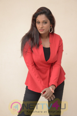 New Movie Shalini Trailer Exclusively Launch Photos Telugu Gallery