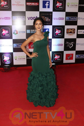 Bollywood And Telly Industry Attend Digital Awards Function Pics Hindi Gallery