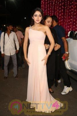 Actress Sayesha Saigal Hot And Sexy Pics Telugu Gallery