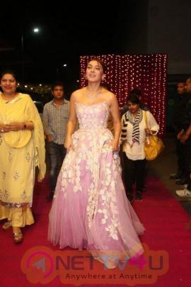 Hansika Motwani Gorgeous Latest Pics Telugu Gallery