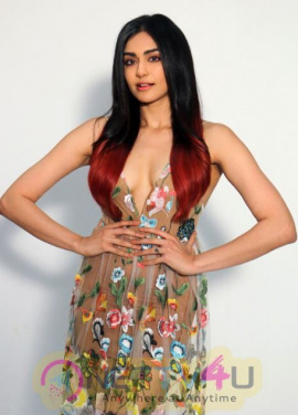 Adah Sharma Hot Collection Telugu Gallery