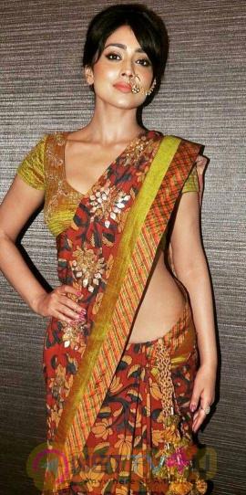 Actress Shriya Saran Traditional Stunning  Saree Photos Telugu Gallery